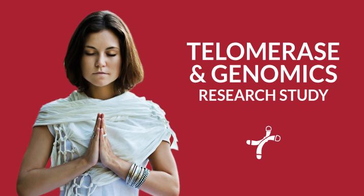 hero-Telomerase-overview