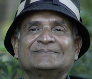 ss-2011-Amit-Goswami